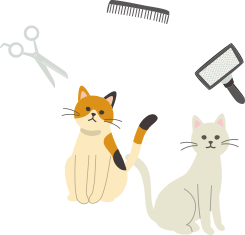 猫ちゃんのトリミング