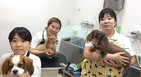 左から 熊野さん・長友さん・中口さん